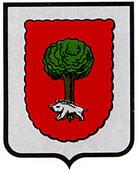 abaurrea-alta.escudo.jpg