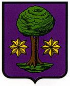 alcoz-ulzama.escudo.jpg