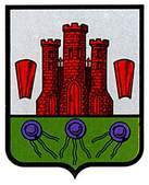 fontellas.escudo.jpg