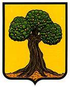 larraga.escudo.jpg