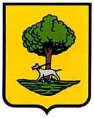 leoz.escudo.jpg