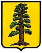 maranon.escudo.jpg