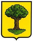 unzue.escudo.jpg